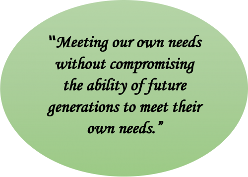 Salihin quotes on future generations need